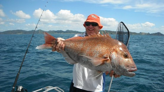 Legend Charters - Day Trips : Snapper