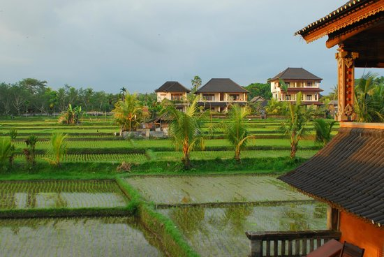 Photo of Ala's Green Lagoon Ubud