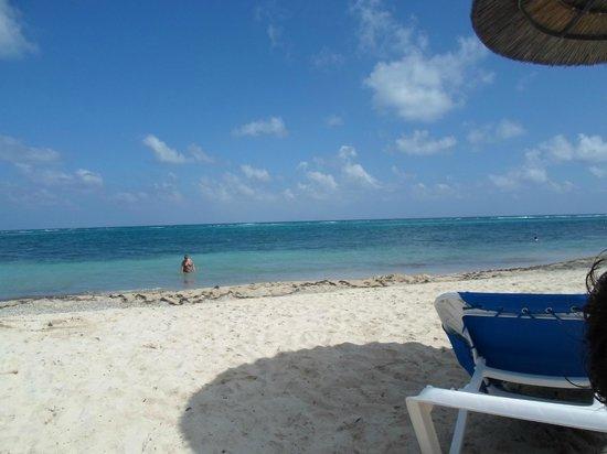 Divi Carina Bay All Inclusive Beach Resort: The beach