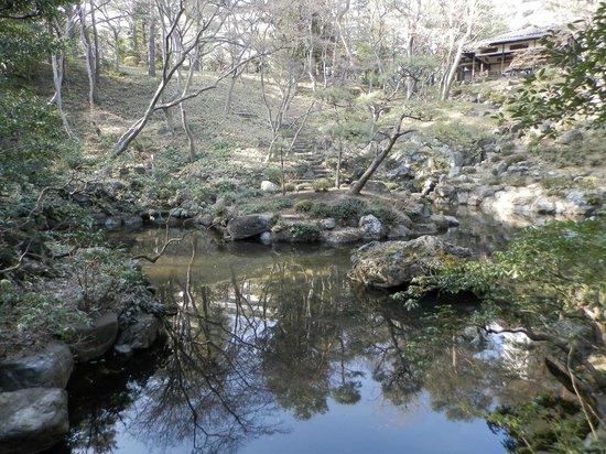 Tonogayato Garden: 殿ヶ谷戸庭公園その2