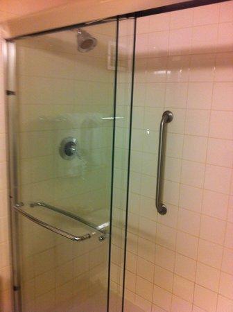 Wyndham Pittsburgh University Center: Bathroom