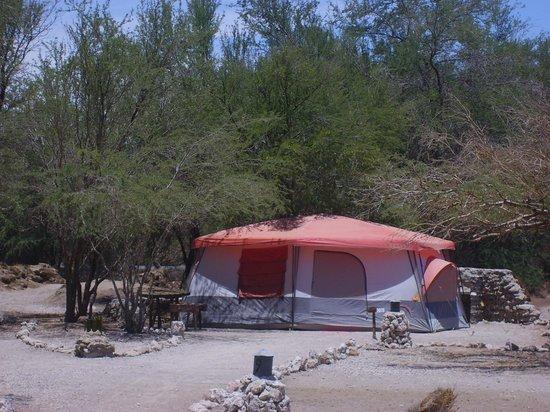 El Huarango: Carpas / Tents
