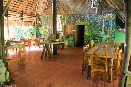 Esquinas Rainforest Lodge: Lodge