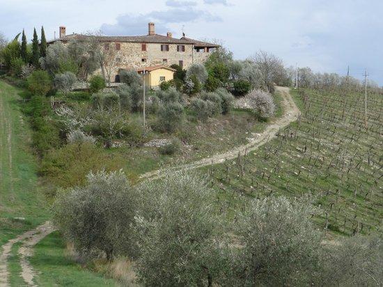 Hotel Belvedere Di San Leonino: Umgebung Hotel