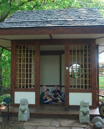 Bookworm Gardens: Meditating