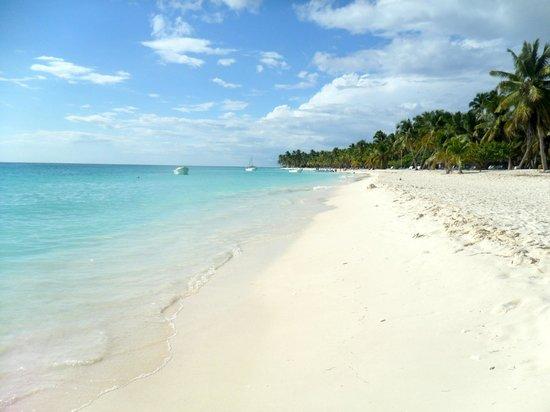 Hotel Riu Palace Punta Cana Saona Island Beach
