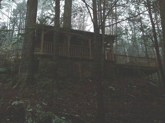 The Wright Cabins : Crow's Nest