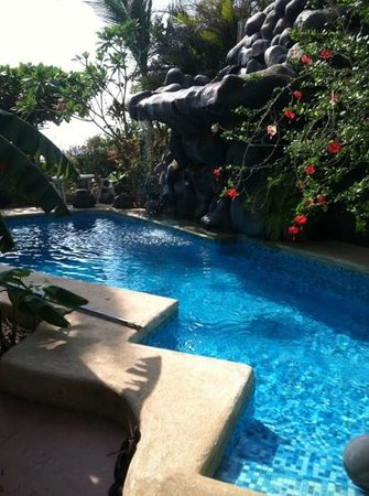 Casa Bambora: the pool and waterfall!!