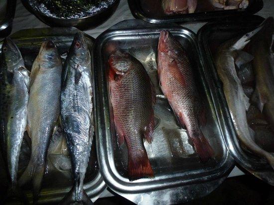 Lui Beach Resort: fish for BBQ