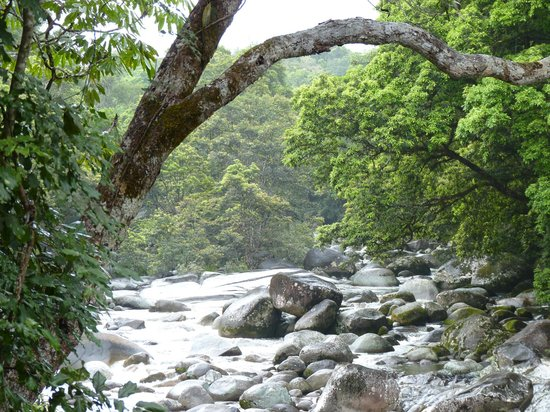 Mossman Gorge: Mossman Photo 3