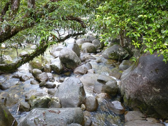 Mossman Gorge: Mossman Photo 2