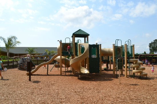 Dinosaur World: Awesome playground for all ages attending the party