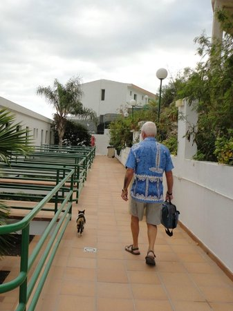 Colina Mar Apartments : going back to our room (with resident cat)