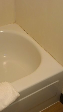 Red Roof Inn Cleveland - Independence: rusted bathtub