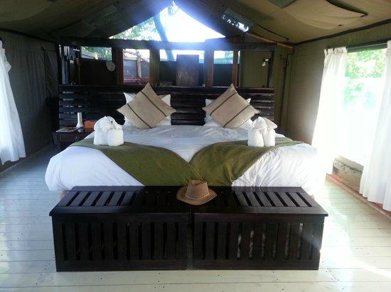 Gunn's Camp : Tent