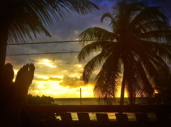De Real Macaw: Sunrise from beach front house veranda
