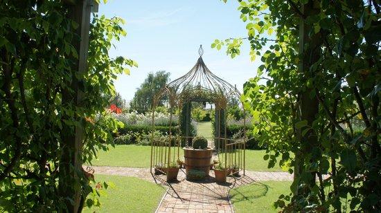 Ryland Estate B&B : Garden