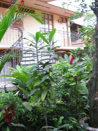 Hotel Cafe Jinotega : View of Courtyard