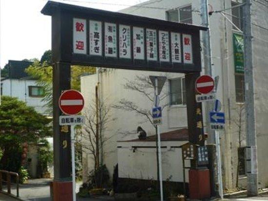 Yugawara Onsen: 湯河原温泉06