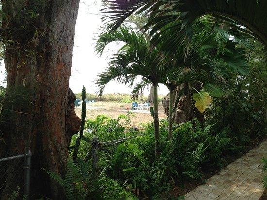 Anna Maria Island Beach Resort : View from master bedroom patio of Gulf