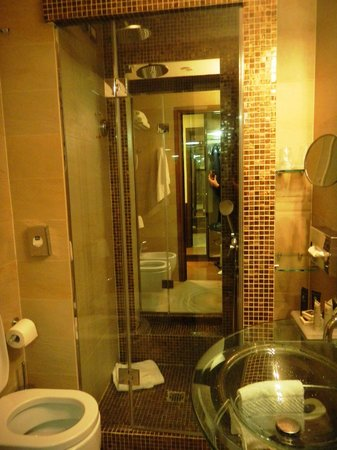 BEST WESTERN Hotel Piccadilly Roma: Particolare bagno