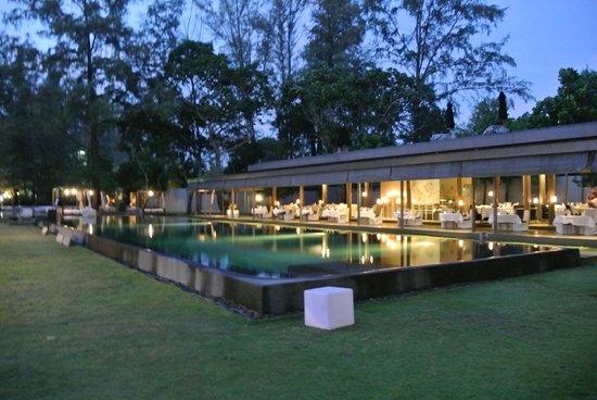 SALA Phuket Resort & Spa: piscine et restaurant