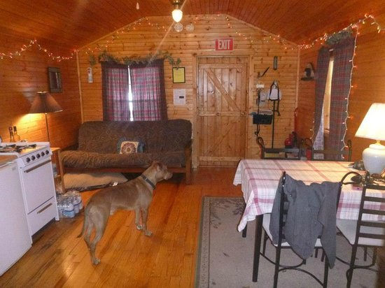 Forest Ridge Campground & Cabins: int