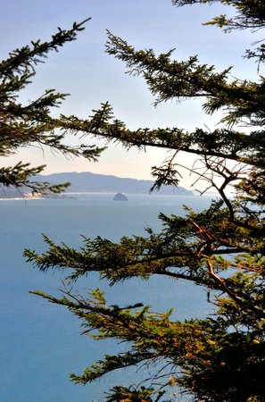 Cape Lookout State Park: Haystack rock at Pacific City, Oregon/Cape Kiwanda