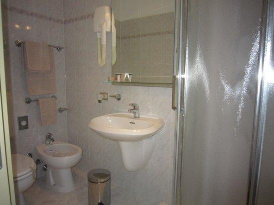 Bologna Hotel Pisa: baño