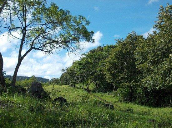 Reserva Natural Miraflor : campi!