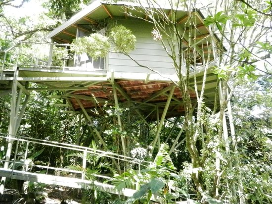 Hidden Canopy Treehouses Boutique Hotel: one of the treehouses