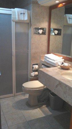 Aurea Hotel and Suites: El baño, hab. Diamante