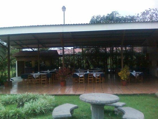 El Novillo del Arenal: Local