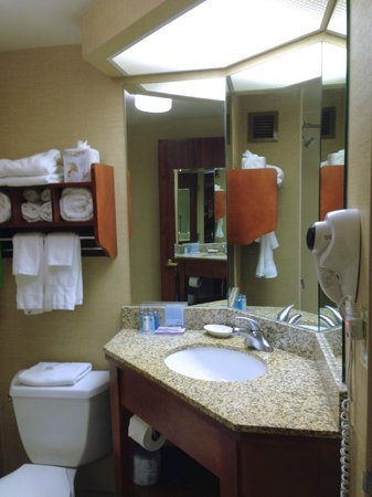 Hampton Inn Peoria-East At The River Boat Crossing: Great lighting and storage in bathroom