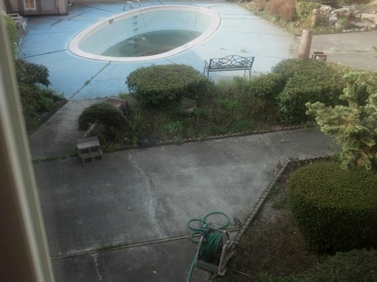 Days Inn Mt. Vernon : pool (see if u can spot dead birds.HINT: 1 is by the hose)