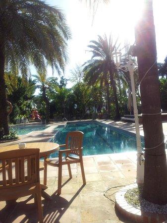 Grangefield Oasis Club: pool