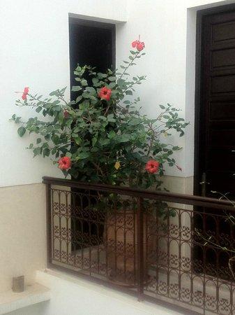 Riad Badi: Outside Cannelle Room