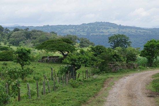 Finca Lindos Ojos: In der Nähe der Finca - Nicht überall nur Urwald