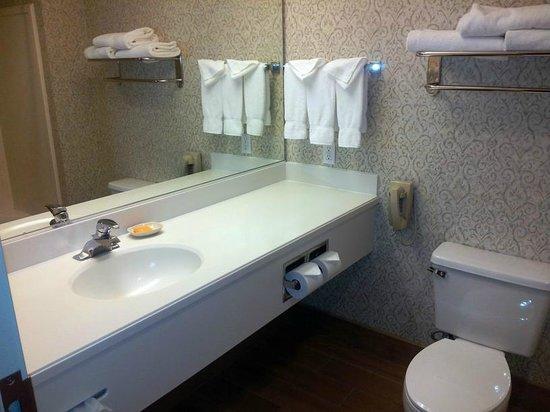 La Quinta Inn & Suites Idaho Falls: Badezimmer