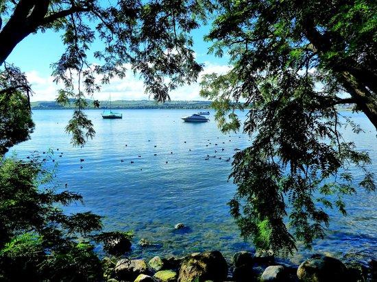 Ash Grove Boutique Motel: Beautiful views of Lake Taupo