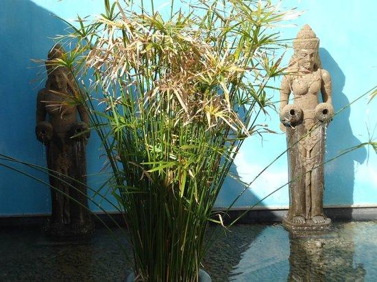 Shanti Som Wellbeing Retreat: Anlage