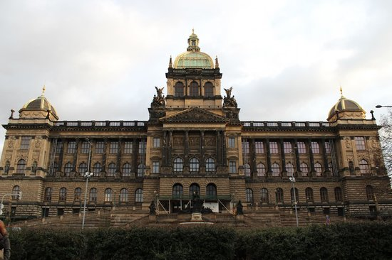 Prague Live Guide Day Tours: View from Wenceslas Square