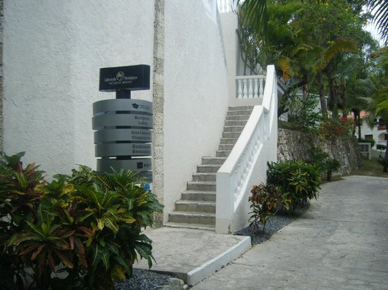Cofresi Palm Beach & Spa Resort: Walkway from our rooms to pools above!