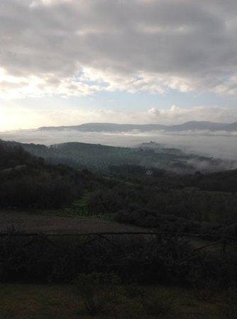 I Casali di Colle San Paolo: vista dal nostro appartamento questa mattina...