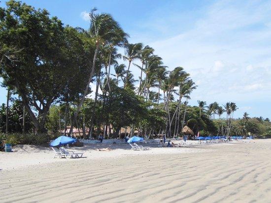 Hotel Villa Amarilla: Beach right outside the hotel