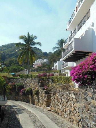 Palma Real: Upper View