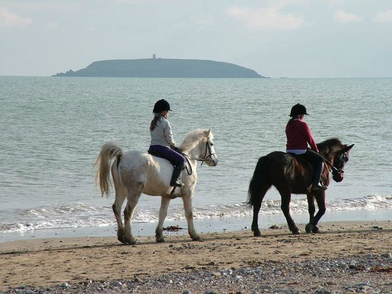 Leahys Lee House: Pony Riding on the Beach