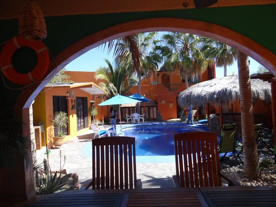 Leo's Baja Oasis : Leo's, view from patio