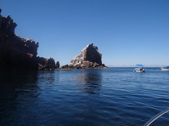 Leo's Baja Oasis : Espiritu Island, snorkeling trip with Leo, 3/2013