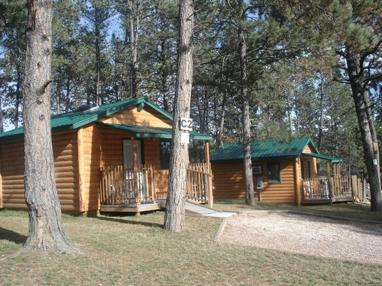 Beaver lake campground updated 2018 reviews custer sd for Cabins near custer sd